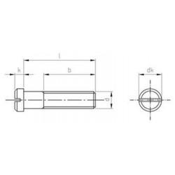 Viti Testa Cilindrica Ridotta A Taglio Inox DIN 920
