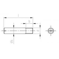 Grani Ad Intaglio Parzialmente Filettato DIN 427 Inox