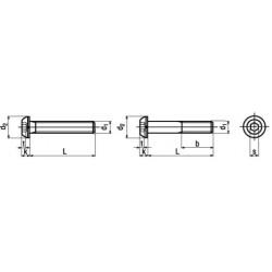 Viti Testa Bombata Esagono Incassato Interamente e Parzialmente Filettate ISO 7380-1