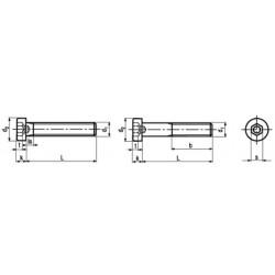 Viti Testa Cilindrica Bassa Esagono Incassato e Foro Guida Interamente-Parzialmente FIlettate DIN 6912