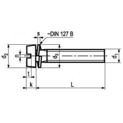 Viti Testa Cilindrica con Intaglio e Rosetta Elastica DIN 84
