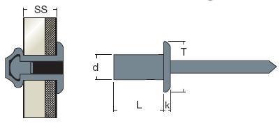 Rivetti Tenuta Stagna Testa Cilindrica Acciaio / Acciaio