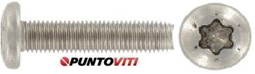Viti Testa Cilindrica Automaschianti TC Croce/Torx Inox DIN7500C